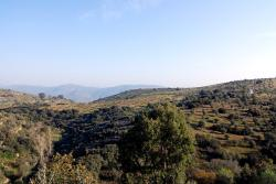 A view over the start of the Douro valley