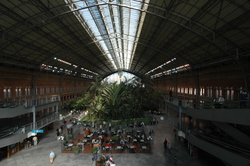 Madrid's Tropical Train Station