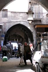 An man and donkey in Aleppo's souk
