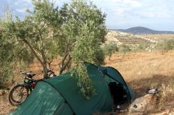 Camping in the olive groves