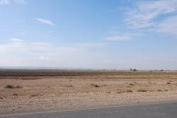 Farmland by the Euphrates