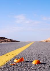Orange peels on the road