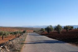 Beautiful roads on the way to Cyrrhus