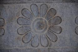 These flowers are on everything at Persepolis