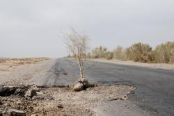The true state of Turkmen roads