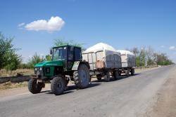 Cotton, the lifeblood of Uzbek farmers