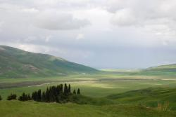 Green pastures coming down into Karakol