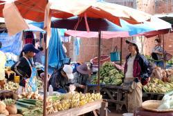 Banana sellers