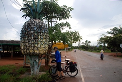 Giant Pineapple!