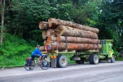 Andrew by one of many logging trucks