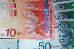 Malay Rignet