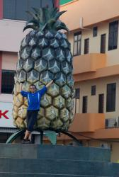 Andrew and a giant pineapple in Pekan Nenas