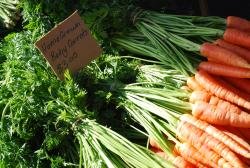 Homegrown Carrots in Salamanca market