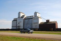 Grain elevators in Lashburn