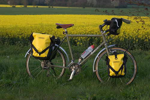 bikeandme-killermonkeys-flickr