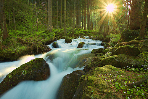 Stream of light, stream of water by rachel_thecat