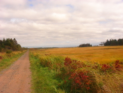 PEI in the fall