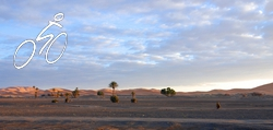 An early morning view of the Merzouga dunes