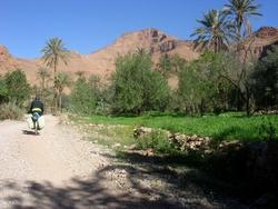 Riding through an oasis