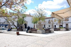 Old men in Almodôvar's town square
